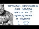 Мужская программа для набора массы на 2 тренировки в неделю 1 тр
