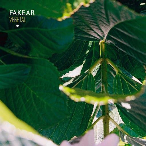 Fakear альбом Vegetal: Offshoots EP