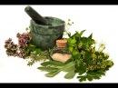 Лекарственные травы, лечебные травы, лечебные минералы, подборка передач РЕН TV