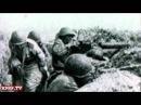 Песня А.Харчикова:От Любани до Мги