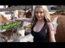 Die Draufgänger Gina Lisa spiel mit deinen Glocken offizielles Video