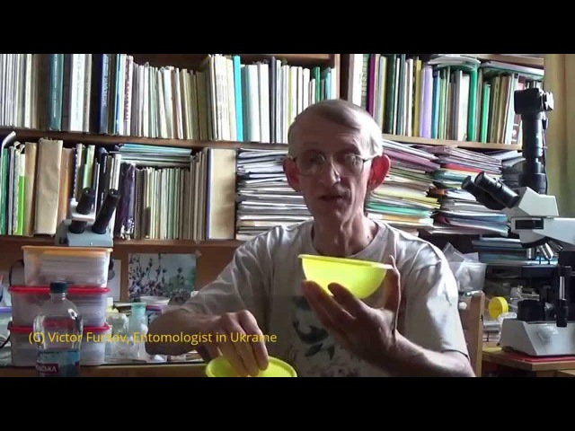 Энтомологу Методы Сборов и Хранения Насекомых, by Entomologist in Ukraine (RUSSIAN)