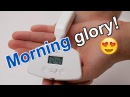An alarm clock vibrator wakes you up with an orgasm