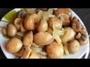 Шикарный быстрый рецепт обалденных маринованных шампиньонов
