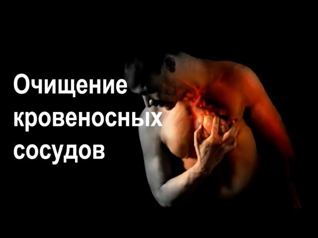 Очищение крови сердца и кровеносных сосудов Очищение сосудов головного мозга Народные методы