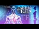 Тайна человеческого тела