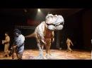 Динозавры роботы robot dinosaurs