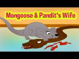 Mongoose & Pandit's Wife - Kids Story | Panchatantra Tales in English | Stories For Kids In English