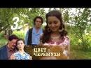 Цвет черемухи. Серия 3 2012