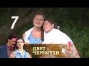 Цвет черемухи. Серия 7 2012