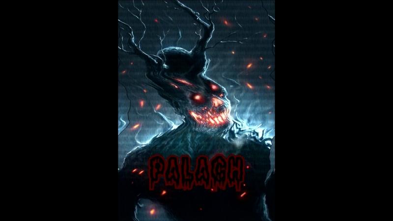 Palach 4