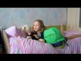 Видео 012