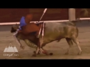 Коррида бой быков. Жесть! Stierkampf. Bullfighting. интересные передачи и фильмы онлайн.