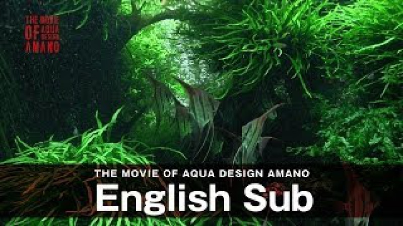 [ADAview] THE MOVIE OF AQUA DESIGN AMANO [side:concept] -English sub.