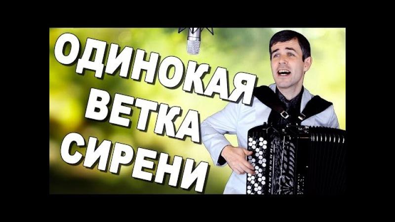 ПЕСНЯ-ШЕДЕВР В ШИКАРНОМ ИСПОЛНЕНИИ! (