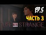 Life Is Strange - Эпизод 5 - Раскол 3