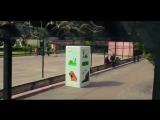 Автоматы для кормления бродячих животных а Стамбуле
