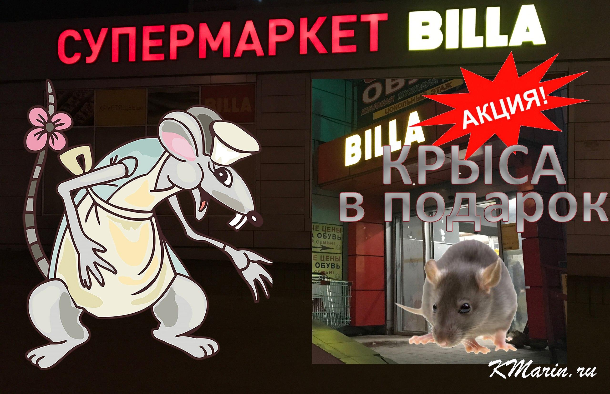 Акция: Крыса в подарок