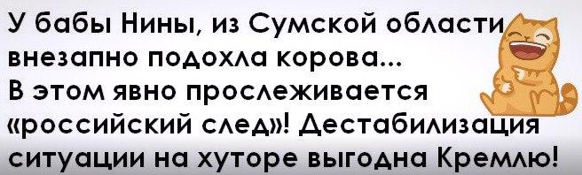 https://pp.userapi.com/c636416/v636416338/181e6/xRKVOtvi_1c.jpg