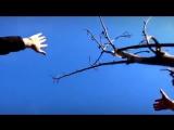 Егор и Наталия Лансере - Прошу дождя. Премьера клипа на телеканалах Сити Эдем ТВ и Сити Эдем Плей!