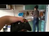 Как научить девушку готовить(Top Video)