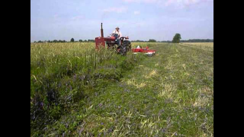 Rinehart farms cover crop crimper Hairy vetchceral rye