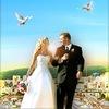 Забайкальский свадебный портал - Wedding75.ru - Всё для свадьбы в Чите и Забайкалье