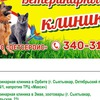 Ветсервис ветеринарная клиника в Орбите, в Эжве