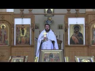О любви и ненависти.Священник Игорь Сильченков