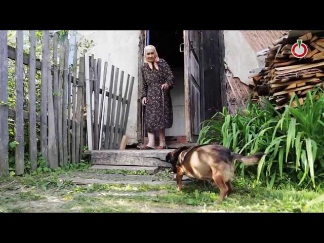 24.06.2014. Бабушки деревни Суханово «Кому мы нужны - мы ходячие»