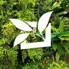 Мой Райский Сад – профессиональное озеленение