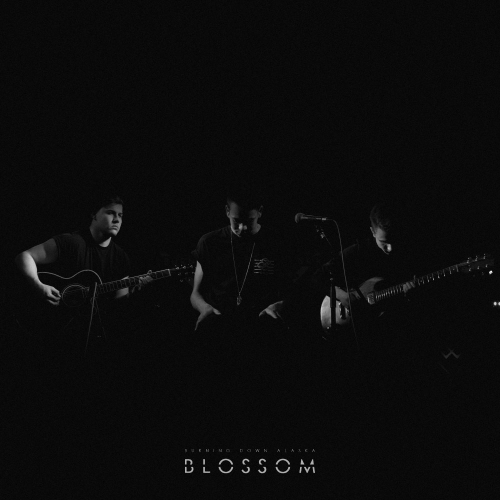 Burning Down Alaska - Blossom [acoustic session] (2016)