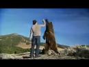 Дружба человека и диких животных