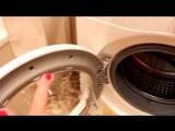 КАК и ЧЕМ легко очистить стиральную машину?