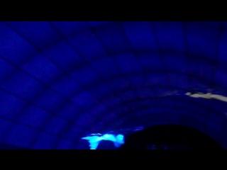 Потрясающий- тоннель LG