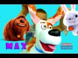 Тайная Жизнь Домашних Животных МАКС MAX The Secret Life of Pets из Мультика Детское Видео