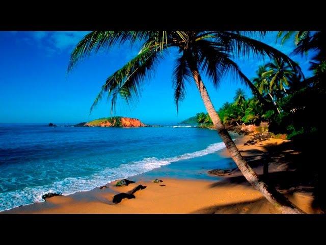 Таинственный остров. Дикая природа Шри- Ланки. Документальный фильм.