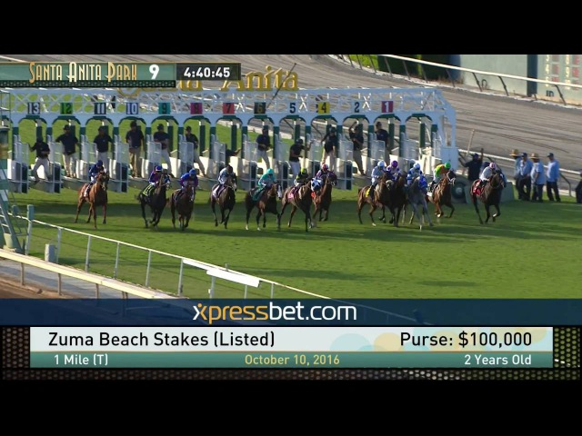 Zuma Brach Stakes Listed Monday October 10 2016