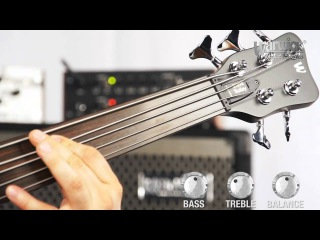 The Artist Series Steve Bailey 5-String Fretless - with Ove Bosch