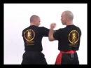 William cheung Wing Chun Kung Fu 1