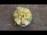 How to make a Daffodil in Butter Cream- Cake Decorating- Cup Cake