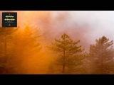 Riva Starr, Cajmere - Viniz (Original Mix) CAJUAL