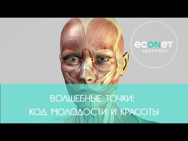 Волшебные точки: Код молодости и красоты   Econet.ru