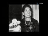 Мария Каллас Богиня на кухне La Divina in cucina. Il ricettario segreto di Maria Callas (Marco Kuveiller, Bruno Tosi, 2007)