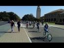 Стенфорд, студенты-велосипедисты