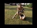 Young UFC Fighter Joe Lauzon vs Dan Lauzon PART 1