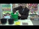 Семинар: Новые методы выращивания томатов, перцев, баклажан.