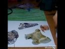 DIY-Коллаж с животными -Arina Lee