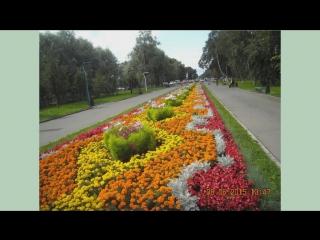 ВОЛОГДА (Мой город зеленый) Самая красивая песня о Вологде!