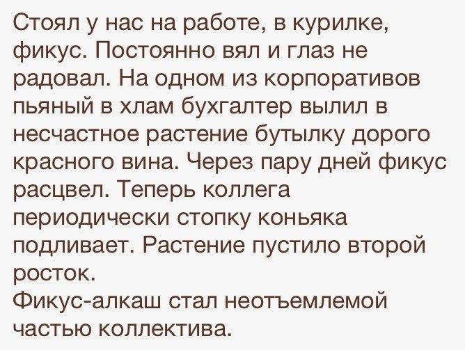 Для настроения - Страница 2 RmKYNuXO_eY